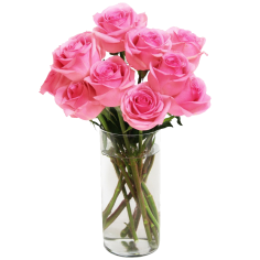 Bouquet of Long Stemmed Roses Pink