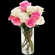 Pink & White Long Stemmed Roses